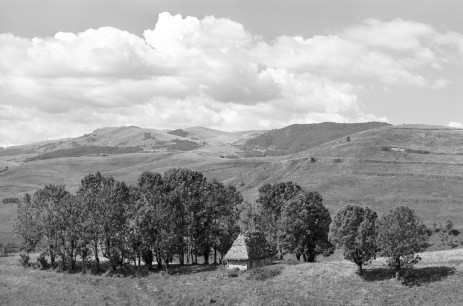 Traditional hay barns in the Apuseni Mountains
