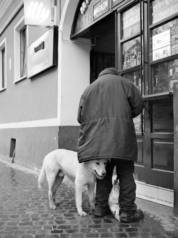 Rainy day in Brasov