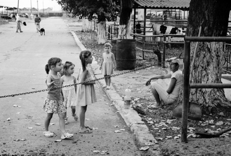 Kids playing within the premises of the Pantelimon cattle farm outside Bucharest