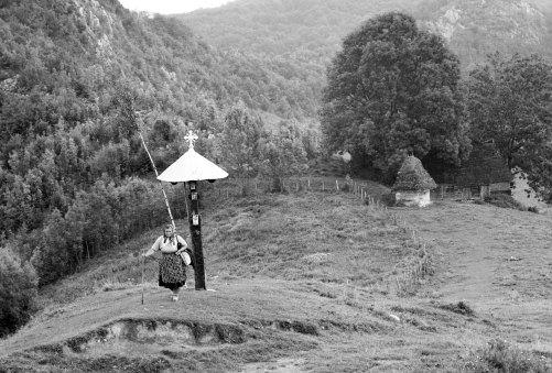 Woman herding cows in the Apuseni Mountains, near Huda lui Papara cave