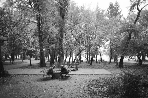 A game of chess, Herastrau Park