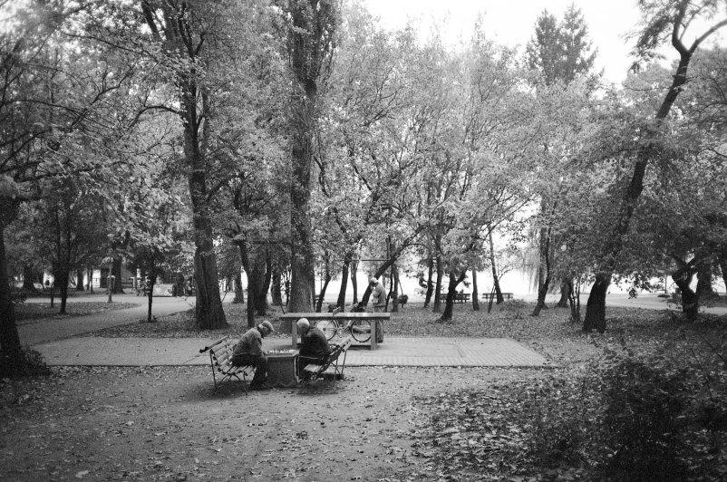 A game of chess, Herastrau Park