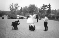 Wedding photo shooting in Herastrau Park